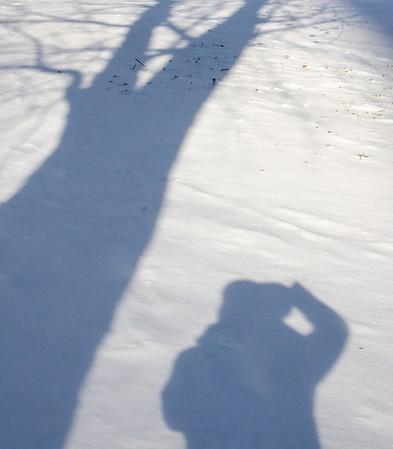 Kent - Week 6 - Shadow