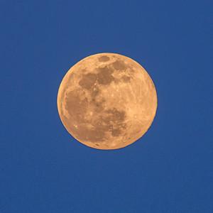 Week 18-Clarke Cochran-The Moon is a Woman