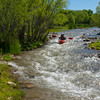 Verde River Institute Float Trip, Tapco to Tuzi, 5/20/17