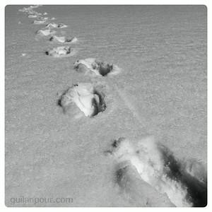 """22/52 - """"Footsteps"""""""