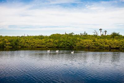 533 White Pelican Cirlce - Orchid Island -37