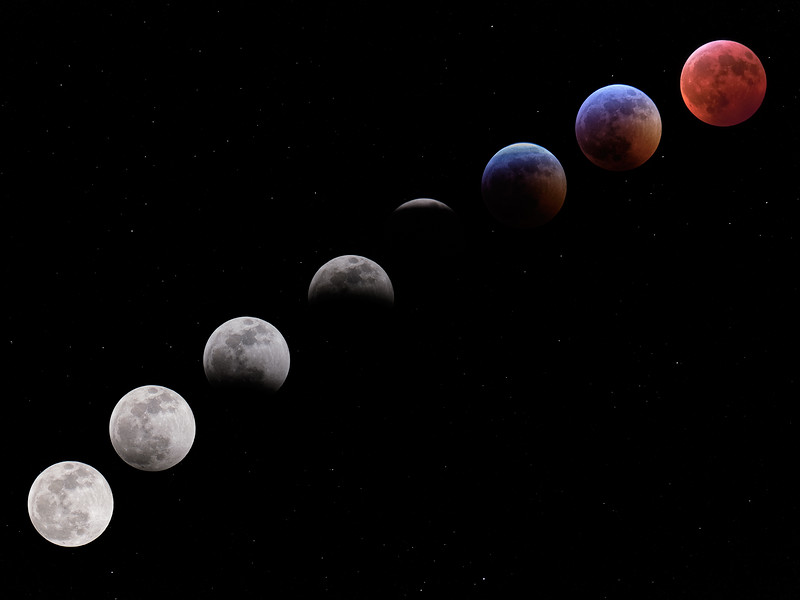 lunar eclipse collage 1