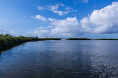 River - Dock - Beach Avalon Beach-30