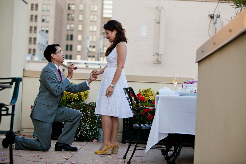 Chris and Patricia Proposal