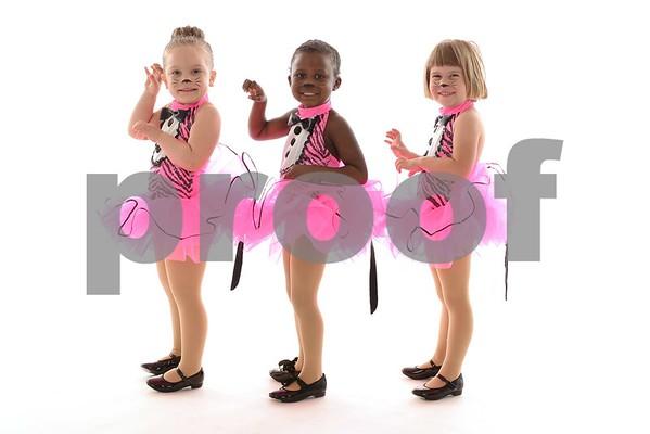 5678 Dance Proofs - 2015