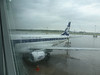 LOT....Polish Airlines.....the rain is so refreshing (65F) after the long hot Israeli summer