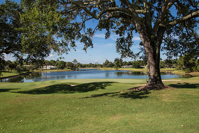 Bent Pint Stock Images - Clubhouse and Golf Course-1042