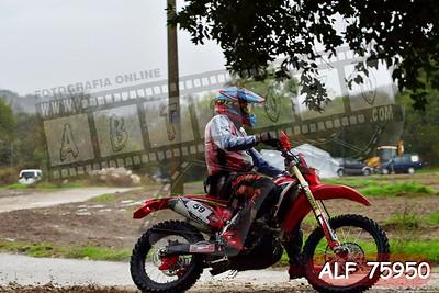 ALF 75950