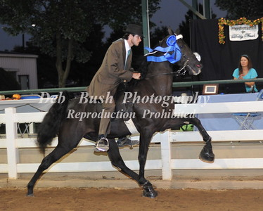 CLASS 14 JUVENILE 12-17 SPECIALTY