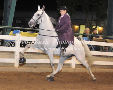CLASS 20 AMATEUR PONIES- 18 YEARS & OLDER SPECIALTY