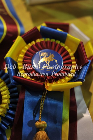 59th ANNUAL SOUTHERN CHAMPIONSHIP CHARITY HORSE SHOW