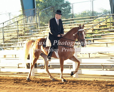 CLASS 9  LITE SHOD ENGLISH SPECIALTY