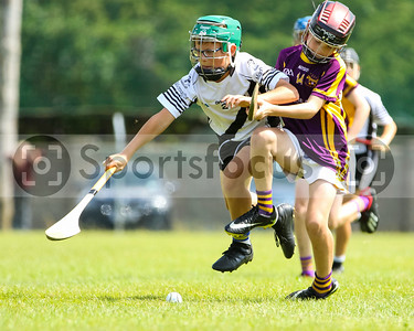 5th August 2019 North Tipperary Under 12 C Cup Final Kilruane McDonaghs vs Newport