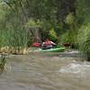 Verde River Institute Float Trip, Tapco to Tuzi, 6/20/17