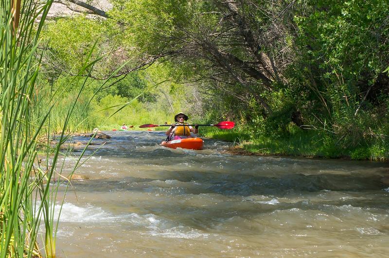Verde River Institute Float Trip, Tapco to Tuzi, 6/23/17