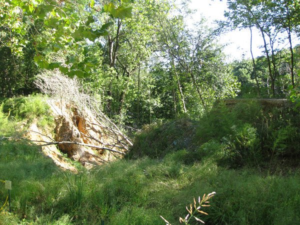 A section of the towpath was destroyed by a flood (photographed September 2009). This illustrates the type of damage that was repaired using TE funds in 1998. <br /> <br /> The Chesapeake & Ohio Canal National Historic Park follows the route of the Potomac River for 184.5 miles from the Georgetown neighborhood of Washington, D.C., to Cumberland, MD. A total of $2,673,961 in TE money has been spent on this project, with five TE awards totaling $1,027,658 spent on the Washington, D.C., section and an additional $1,646,303, from two TE awards, spent on the Maryland section of the C&O Canal. The TE awards went toward rehabilitating various segments of the canal and the adjacent towpath and constructing several pedestrian bridges, which provide pedestrians and cyclists with safe access points to the towpath. On several of these projects, the National Park Service was a key partner.<br /> <br /> Hundreds of original structures, including locks, lockhouses and aqueducts, serve as reminders of the canal's role as a transportation system during the Canal Era. In addition, the canal's towpath provides a nearly level, continuous trail through the spectacular scenery of the Potomac River Valley. The canal towpath trail connects to the Grand Allegheny Passage rail-trail, creating a bicycle route connecting DC all the way to Pittsburgh, PA. Most of the annual visitation is concentrated in the first 14 miles of the canal -- from Georgetown to Great Falls. Solitude and quiet are easily found in the upper areas of the canal much of the year.