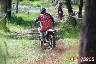 ALF 75905