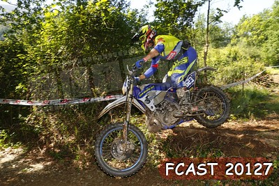 FCAST 20127