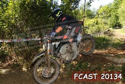 FCAST 20134