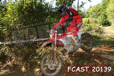 FCAST 20139