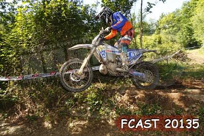 FCAST 20135