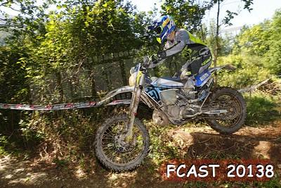 FCAST 20138