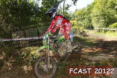 FCAST 20122