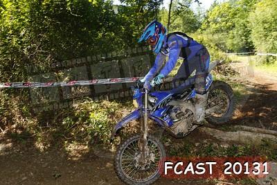FCAST 20131