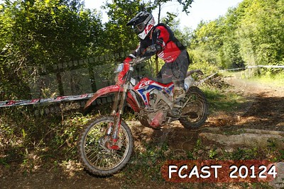 FCAST 20124