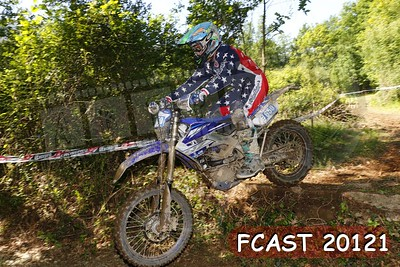 FCAST 20121