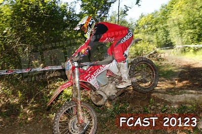 FCAST 20123
