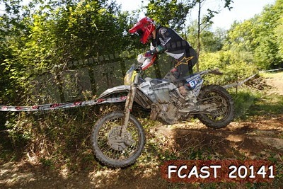 FCAST 20141