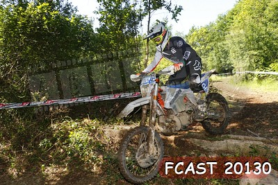 FCAST 20130