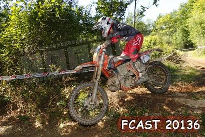 FCAST 20136