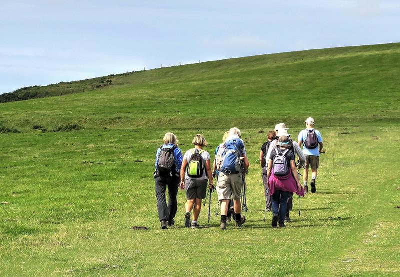 Lovely open grassland make for easy walking