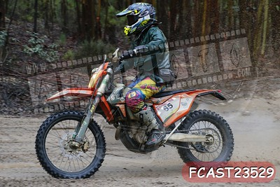 FCAST23529