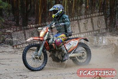 FCAST23528