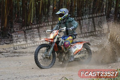 FCAST23527