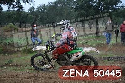 ZENA 50445
