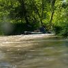 Verde River Institute Float Trip, Tapco to Tuzi, 6/8/19