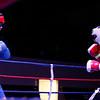 Guzman vs Alvarado011