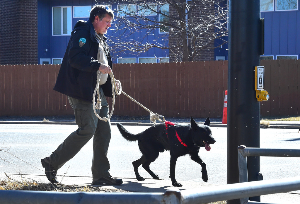 . A Boulder County Open Space officer takes a dog around the neighborhood as they investigate the scene at 690 Manhattan Drive in Boulder on Wednesday morning.  For more photos of the scene go to www.dailycamera.com Paul Aiken Staff Photographer Feb 15 2017