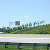 "Landscaping at the Sam Jones Interchange.  The 2010 Lilly Global Day of Service focused on the six-mile I-70 corridor running from the airport through downtown Indianapolis. <a href=""http://www.kibi.org/"">Keep Indianapolis Beautiful, Inc.</a> (KIBI) a local nonprofit with a 30-year track record of successful beautification partnerships in Indianapolis, envisioned something much grander than the usual highway ramps. Bringing together the city of Indianapolis, the Indiana Department of Transportation, community leaders, neighborhood groups, and the private sector, KIBI coordinated a master planning process for the corridor with the landscape architecture firm <a href=""http://www.bdmd.com/"">Browning Day Mullins Deerdorf</a>. The project culminated in the 2010 Eli Lilly Day of Service, where over 8,000 Lilly employees added low maintenance vegetation, planted trees, and positioned totem poles and lotus leaf sculptures, transforming the I-70 corridor. The $1 million TE grant supporting the project was matched by an additional $1 million from Eli Lilly in addition to the volunteer labor, a major private investment on behalf of public infrastructure.  Learn more about this extraordinary project at  http://www.agreenerwelcome.org/."