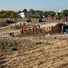 "Volunteers busy planting trees.   The 2010 Lilly Global Day of Service focused on the six-mile I-70 corridor running from the airport through downtown Indianapolis. <a href=""http://www.kibi.org/"">Keep Indianapolis Beautiful, Inc.</a> (KIBI) a local nonprofit with a 30-year track record of successful beautification partnerships in Indianapolis, envisioned something much grander than the usual highway ramps. Bringing together the city of Indianapolis, the Indiana Department of Transportation, community leaders, neighborhood groups, and the private sector, KIBI coordinated a master planning process for the corridor with the landscape architecture firm <a href=""http://www.bdmd.com/"">Browning Day Mullins Deerdorf</a>. The project culminated in the 2010 Eli Lilly Day of Service, where over 8,000 Lilly employees added low maintenance vegetation, planted trees, and positioned totem poles and lotus leaf sculptures, transforming the I-70 corridor. The $1 million TE grant supporting the project was matched by an additional $1 million from Eli Lilly in addition to the volunteer labor, a major private investment on behalf of public infrastructure.  Learn more about this extraordinary project at  http://www.agreenerwelcome.org/."