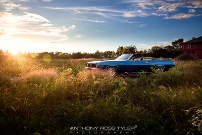 009 - Cuda in the weeds