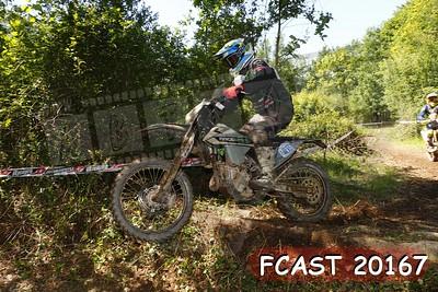 FCAST 20167