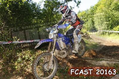 FCAST 20163