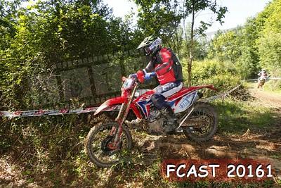 FCAST 20161