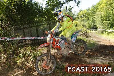 FCAST 20165