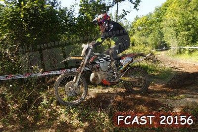 FCAST 20156